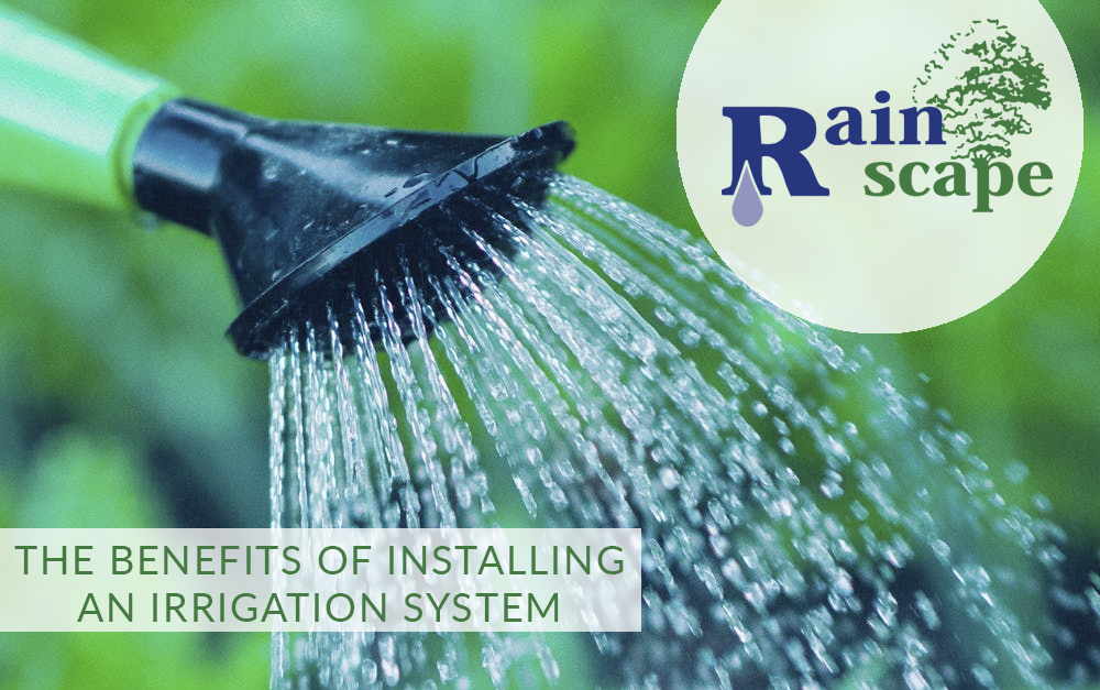 The benefits of installing an irrigation system