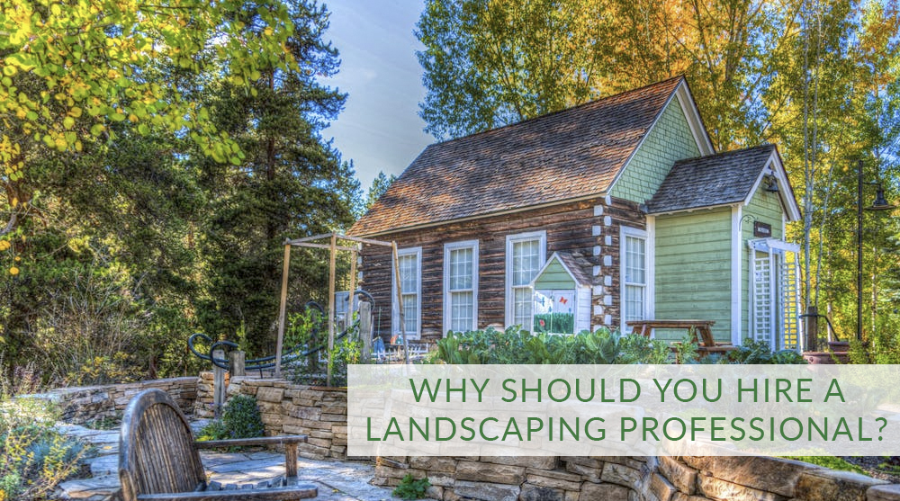Why should you hire a landscaping professional?