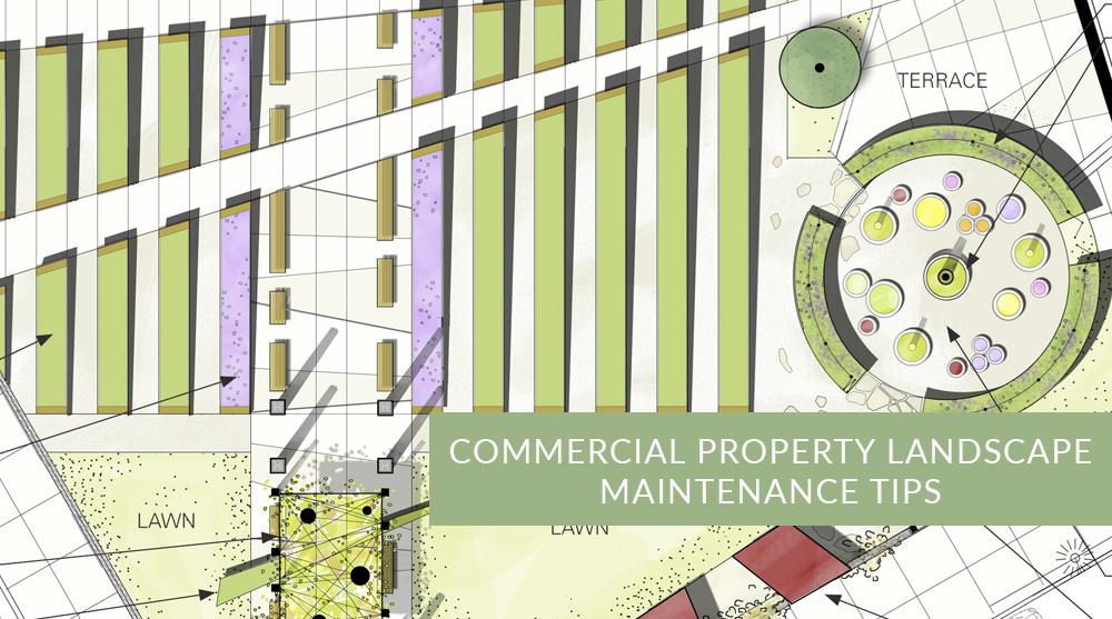 Commercial Property Landscape Tips | Commercial Property Landscapers